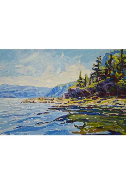 Ryan Sobkovich – Vision of Newfoundland