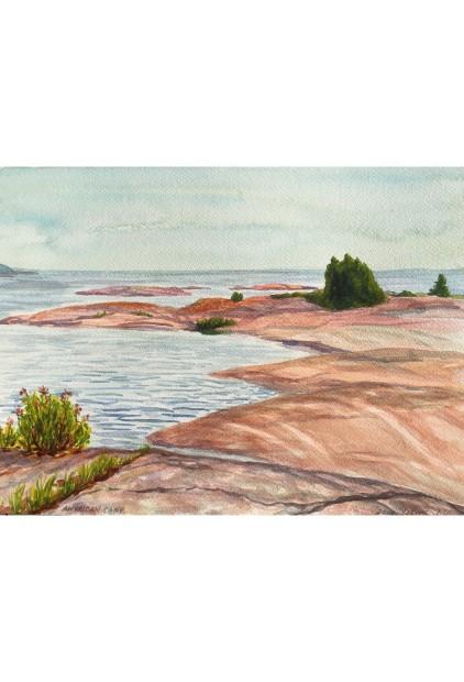 Wendy Wingfelder – American Camp Island