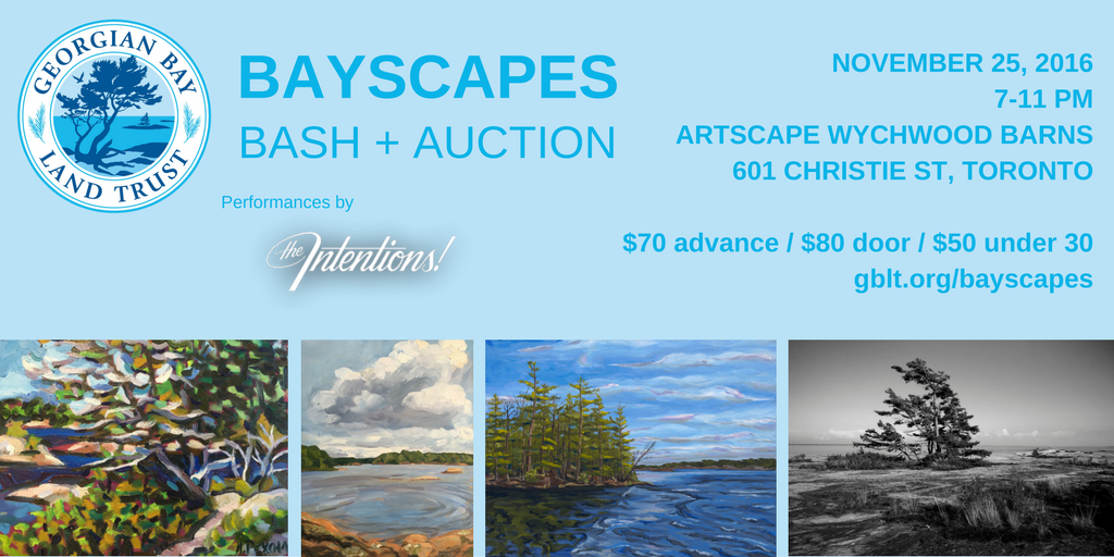 bayscapes-shareable-twitter