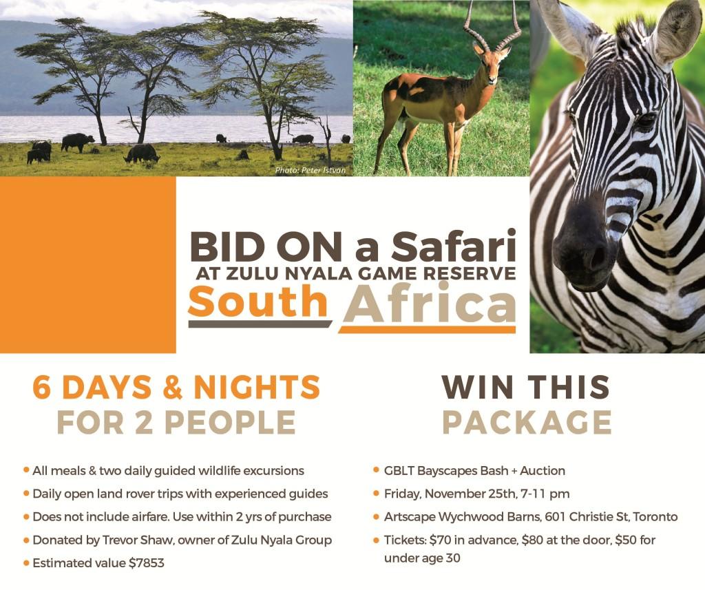 safari-bid-01-2